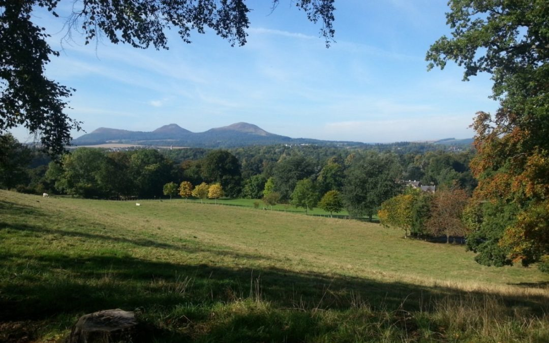 Race Report: Jedburgh 3 Peaks Ultra – A tale of nutrition